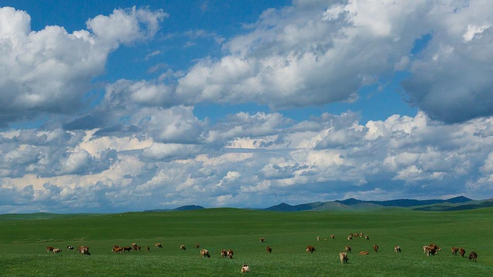 青い空と緑の大地